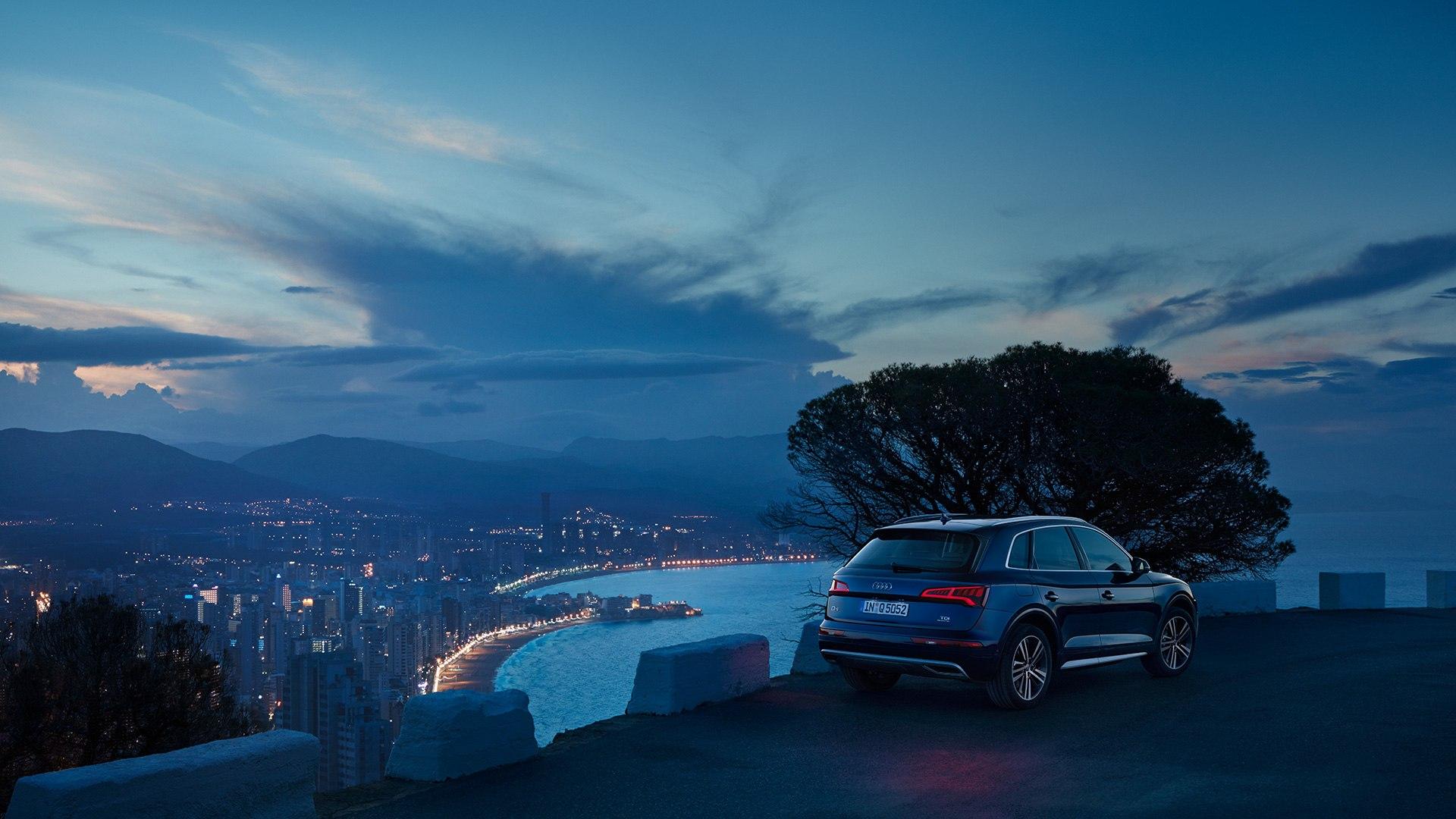 Audi Q5 ambience